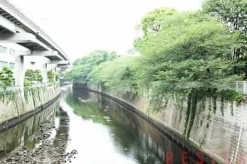グリーン江戸川橋 803