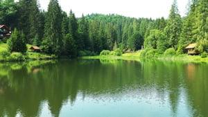 soñar con lagos