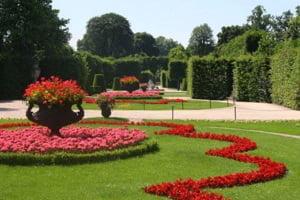 significado-de-soñar-con-un-jardín