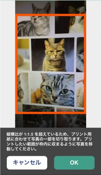 seven_netprint6
