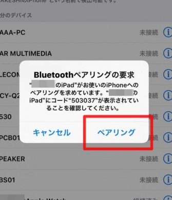<iPhone>