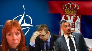 Миленко Вишњић: Пакт са НАТО или исламистима