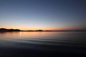 浜名湖みかん