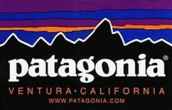 patagonia%e7%99%bb%e5%b1%b1%e4%ba%ba%e6%b0%97%e3%83%96%e3%83%a9%e3%83%b3%e3%83%89