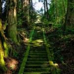 白山比咩神社へアクセスバス・電車・車での行き方と地図もご紹介!