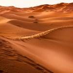 サハラ砂漠にゴミをばまく日本人がいる!驚きの理由と結果・ごみの役割とは?
