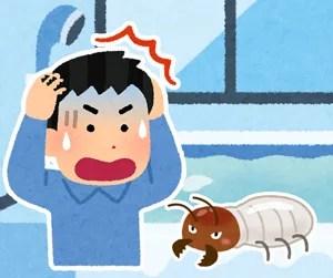 浴室のシロアリ