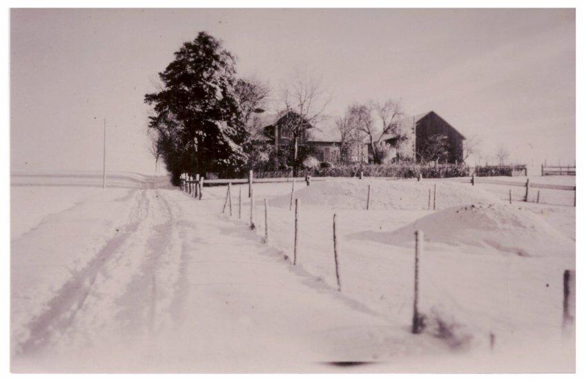 Groß Hasselberg Hof Kuhn im Winter