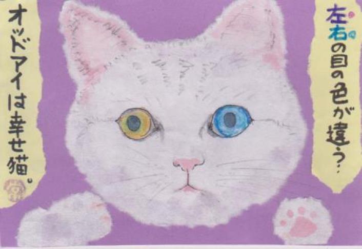 猫の絵手紙ー27