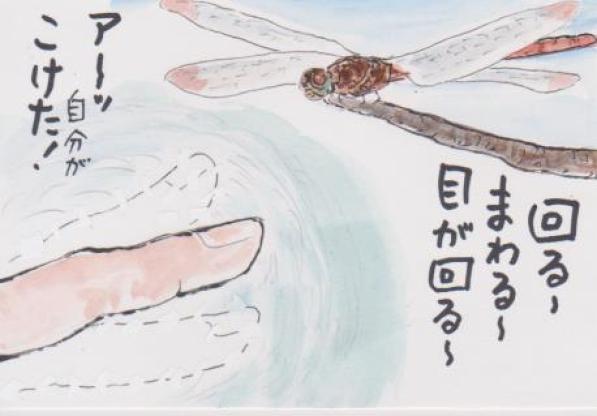 トンボの絵5