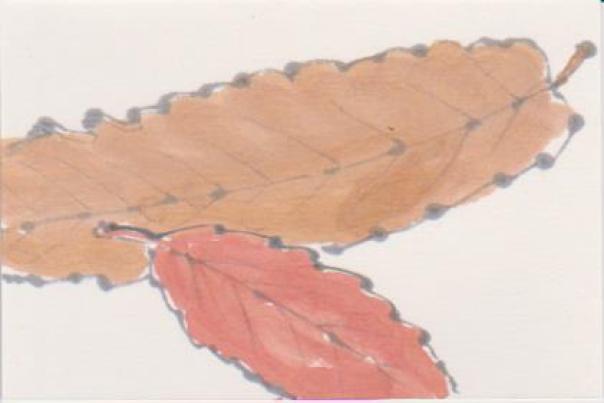 栗の葉の絵ー2