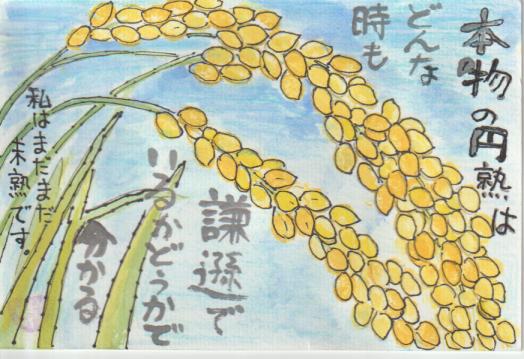稲穂の絵手紙ー1