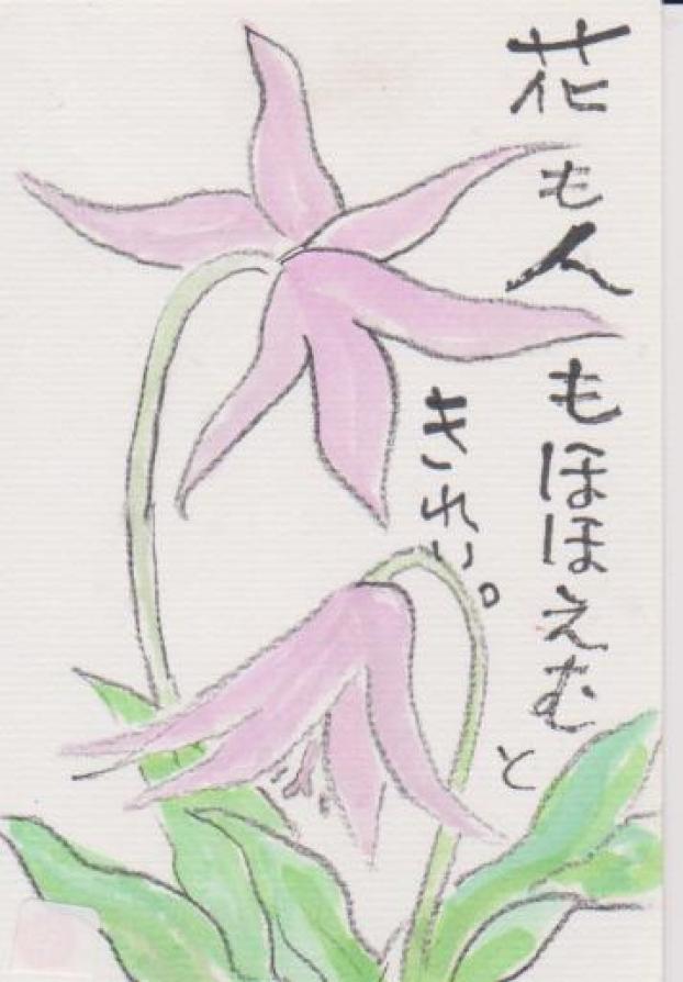 カタクリの花の絵ー10