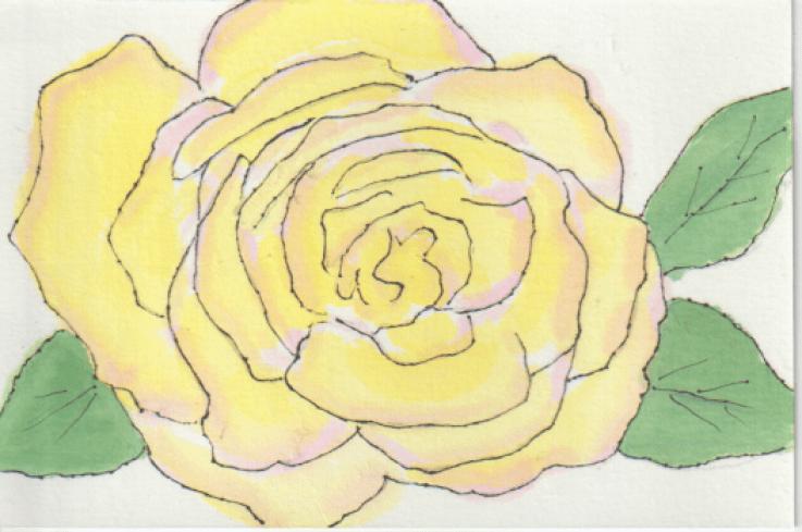 黄色のバラの絵手紙ー2書き直し