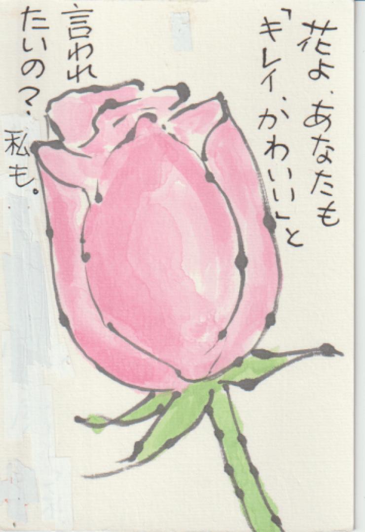 ピンクのバラの絵手紙ー6