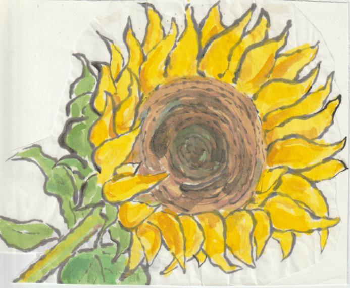 向日葵の絵手紙の絵ー9