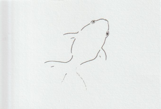 金魚の絵手紙画像ー3