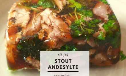 Stout Andesylte