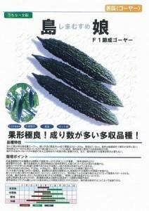 husinarigoya-212x300