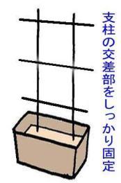 sityu (2)
