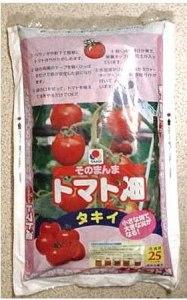 tomato-hukurosaibai001