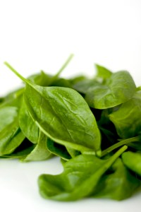 spinach-1322063