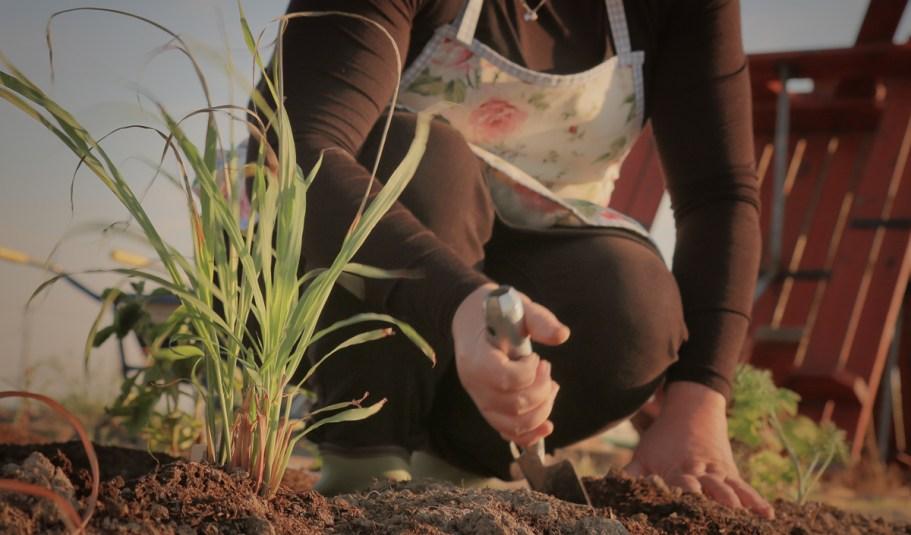 ガーデン土質