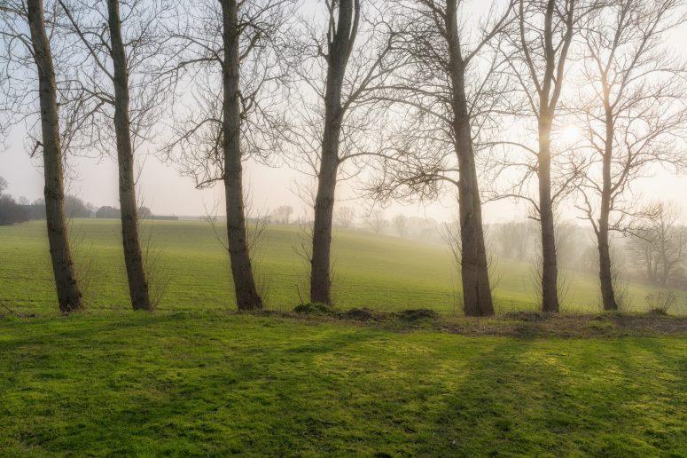 Langeland 2015 Vinter (19 of 30)