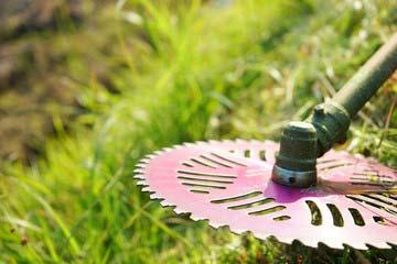 福岡市中央区 一軒家 庭の草刈り|えびす造園