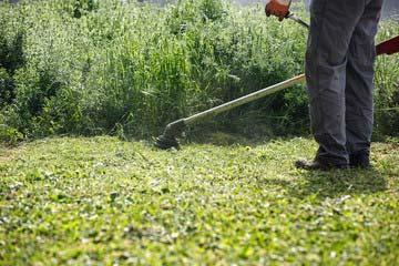 福岡市東区 一軒家 庭の除草|えびす造園