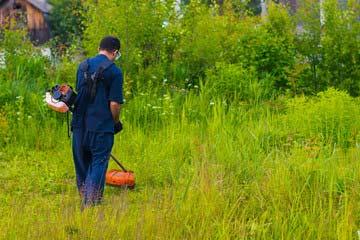 那珂川市 一軒家 庭の除草|えびす造園