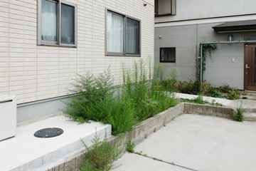 古賀市 一軒家 庭の草取り|えびす造園