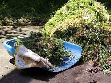 福岡市南区 一軒家 庭の草取り|えびす造園