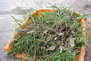 久山町 一軒家 庭の草抜き|えびす造園