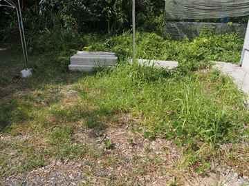 篠栗町 一軒家 庭の草取り|えびす造園