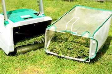 那珂川市 一軒家 庭の芝の手入れ|えびす造園