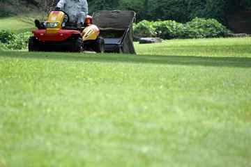 粕屋町 一軒家 庭の芝の手入れ|えびす造園