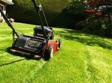 久山町 一軒家 庭の芝刈り|えびす造園