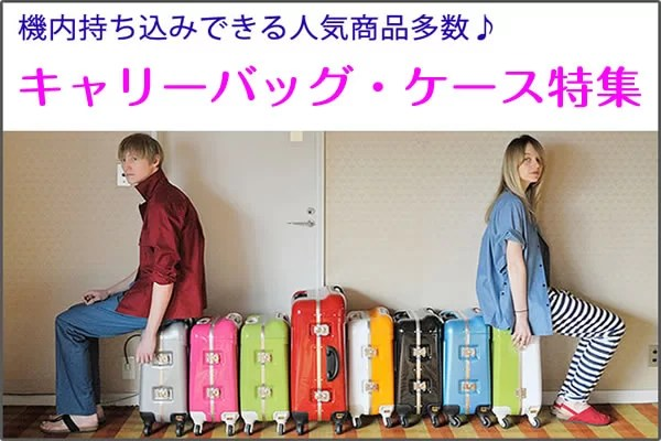 suitcase_currybag_2