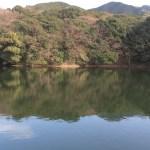 福岡市バスフィールドレポート|某野池49