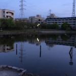 福岡市バスフィールドレポート 城南区編(西の堤池part13)
