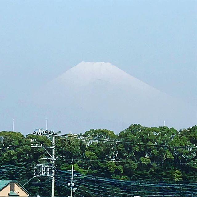 初マウントフジ!生きてる間に見たいものの一つをクリアしました〜静岡に一泊。帰りの新幹線の中から第二の故郷である滋賀県を20数年ぶりに見れた〜幸せ(๑˃̵ᴗ˂̵) 次はデカバスハントで滋賀に行きたいっす…