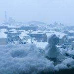 【注意】めったに雪が降らない自動車王国名古屋で雪が降ると車のスリップが続出します。歩行者の皆さん死ぬほど気をつけましょう。運転手の皆さんスタッドレスを。