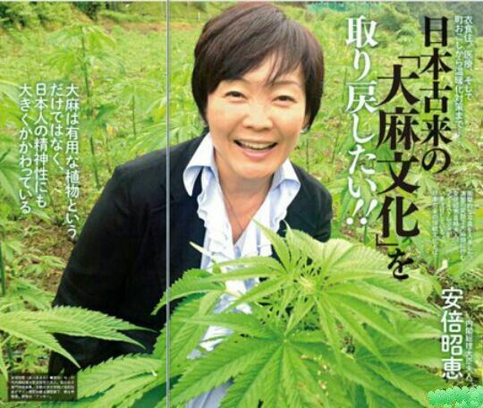 【大麻】国連薬物委員会、「大麻は有効性があり、比較的安全」と宣言…国際的な規制に大きな影響を与える可能性★4 YouTube動画>8本 ->画像>99枚