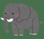 【凄いぞう】ゾウがガンになりにくい仕組みが判明「死んだ遺伝子を復活させてガン細胞を殺す」