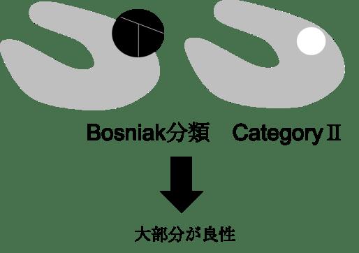 bosniak classification category2
