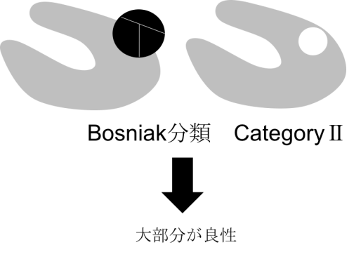 bosniak classification category2