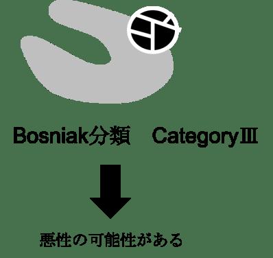 bosniak classification category3