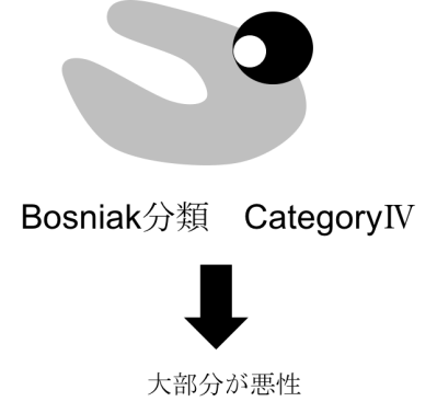 bosniak classification category4