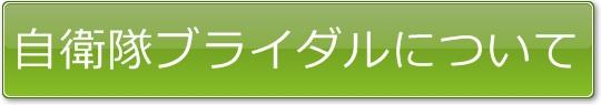 button_009